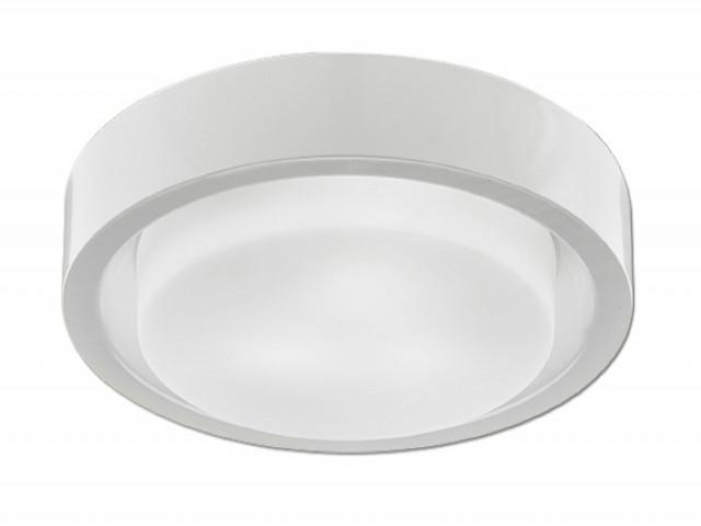 吸頂燈(V-4791)
