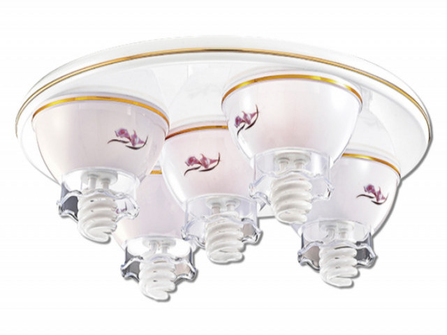 半吸頂燈(V-4491)