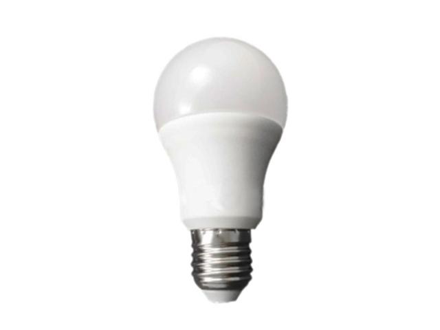 LED  10W  球泡