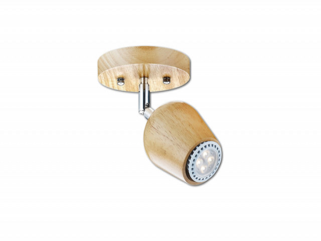 吸頂燈(V-4931)