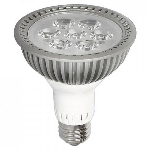 筒燈par30.jpg